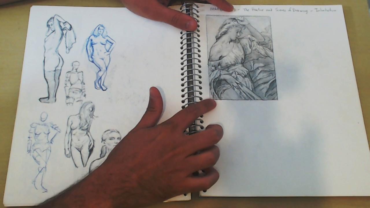 Como estudar anatomia