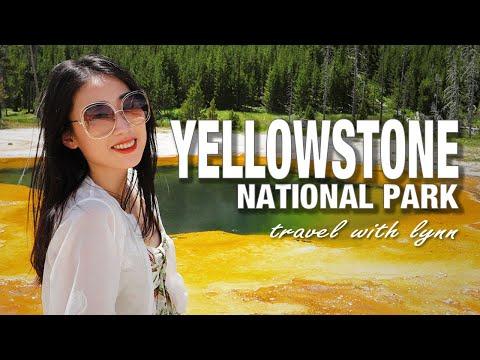 Yellowstone National Park🏕️黄石国家公园 | 🐻BLACK BEAR⚠️我们遇到了大黑熊!!! | Travel Vlog