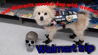 Walmart trip/kid tries to distract my service dog with treats?!