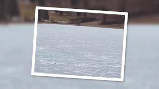 Lac Gelée montana crans