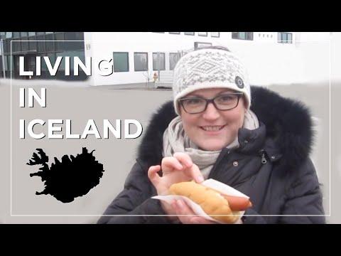 Living in Iceland: Feeding Ducks, Life Drawing, Banana Bread + The Lurgy (week 6) | Sonia Nicolson