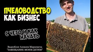 Пчеловодство как бизнес-план. Ответ на вопрос подписчика(Мой канал