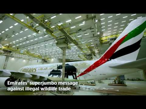 Emirates are against illegal wildlife trade