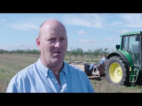 Whitehall Farm – planting to improve economic returns