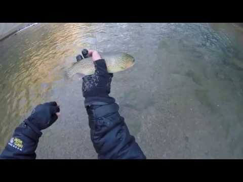 Red River Gorge Fly Fishing - (Indian Creek/ Swift Camp Creek) Kentucky - January 2015 HD GoPro