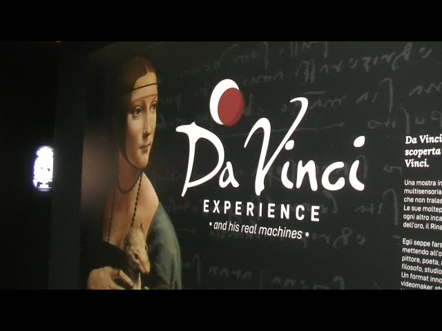 Da Vinci Experience vr