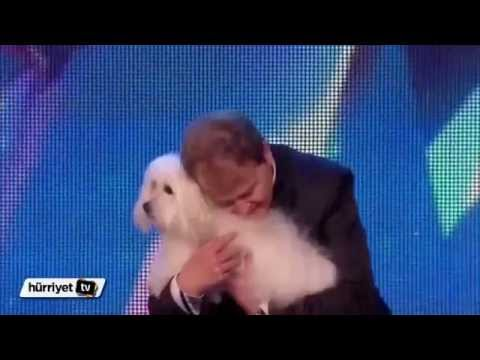 The Talking Dog - Britain's Got Talent