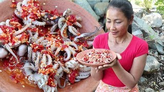 Cooking octopus with peppers for lunch - Octopus with peppers recipe for eating delicious ep 06