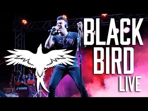 Blackbird Band -