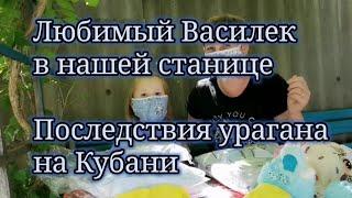 Покупки в интернет магазине Любимый Василёк. Последствия урагана на Кубани.