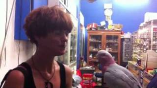 Louise and I with the parrot. We call all parrots Dave. Just so ya know!
