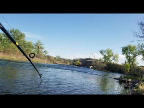 Fishing the Arkansas river