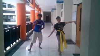 Opening Dance NMRC 2014 Simulation