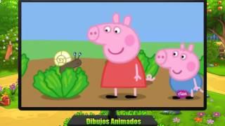 Peppa Pig en Español Capitulos Completos - Peppa la cerdita HD