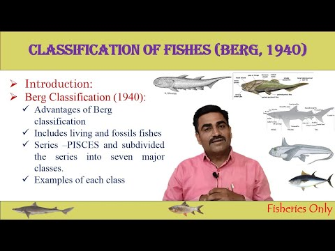 CLASSIFICATION OF FISHES (BERG, 1940)