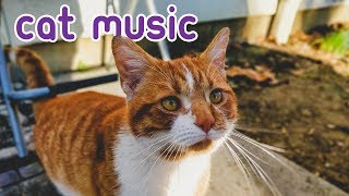INSTANT SLEEP MUSIC  15 HOURS of Soothing Feline Melodies.