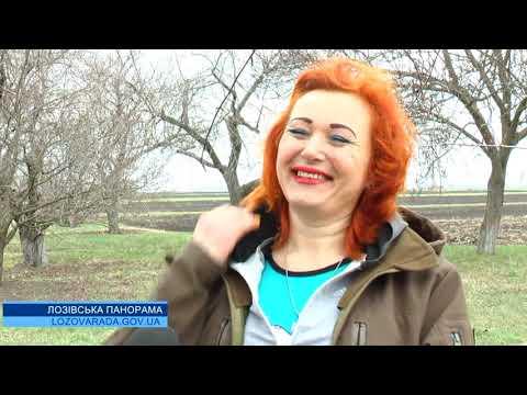 telekanal Vektor: Лозівська панорама 01 04 2020