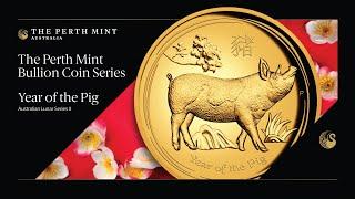 Close look at 2019 Year of the Pig Australian Lunar bullion coins