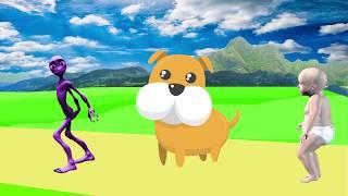учить животных для малышей - животные для детей - видео развивающее #22