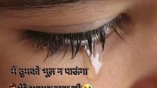 Shri Anandpur Bhajan ! Shri 5th padshahi swami ji maharaj ji ki yaad me ! Main Tumko Bhul na Paunga