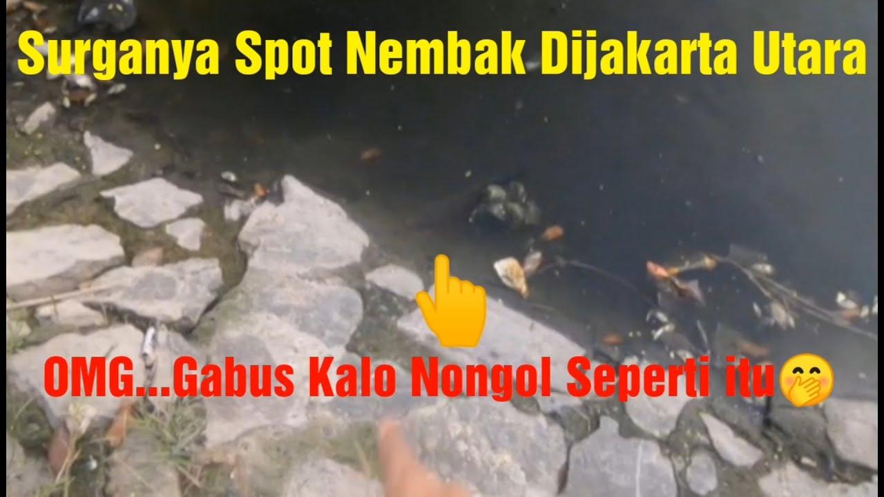 Inilah Spot Spot Di Jakarta Utara , Ikannya Babon2 Brooo #PART1