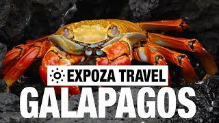 Galapagos Islands Vacation Travel Video Guide