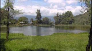 alirio diaz play: conticinio ( solo audio )