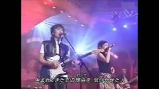 Love Since 1999 濱崎步 淳君 By 小菁 Achin