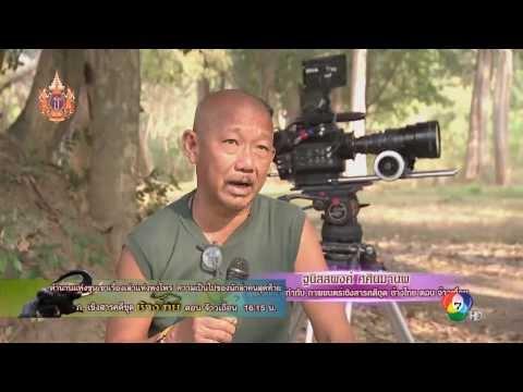 สารคดีช้างไทย ตอนจ้าวเถื่อน เริ่ม 4 เม.ย.นี้ ทางช่อง 7 สี