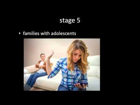 Family Life Cycle Theory