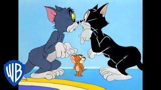 Том и Джерри Классический мультфильм 85 WB Kids