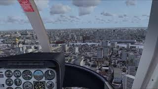 Microsoft Flight Simulator X 2019 02 08