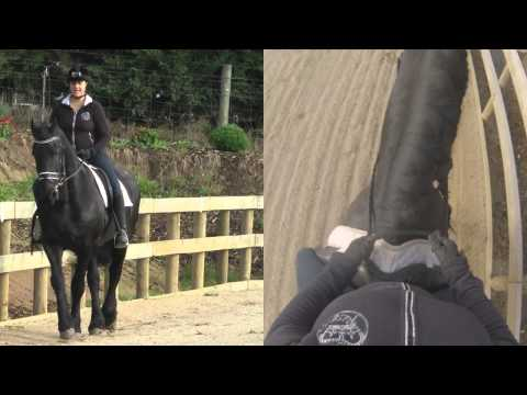 How to Leg Yield - Dressage Mastery TV Ep13