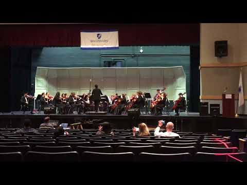 """Elgar """" Introduction and Allegro"""" NHS Chamber Orchestra @ 2018 WorldStrides"""