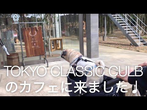 TOKYO CLASSIC CULBのお洒落なカフェ パグのおまめの毎日