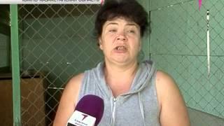 В пригороде Шымкента женщина держит 40 собак