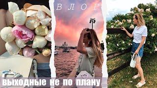 ВЛОГ ВЫХОДНЫЕ КОТОРЫЕ ПОШЛИ НЕ ПО ПЛАНУ ЛЕТНЯЯ МОСКВА МОЙ УХОД ЗА ВОЛОСАМИ AlenaPetukhova