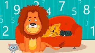 Почему коты урчат? Мультик про котов - Обучающие мультфильмы для малышей