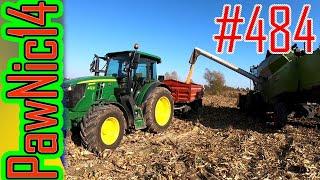 Plonowanie kukurydzy w suszę (Zbiór ziarna) - Życie zwyczajnego rolnika #484