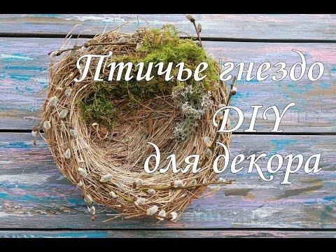 Гнездо птицы своими руками