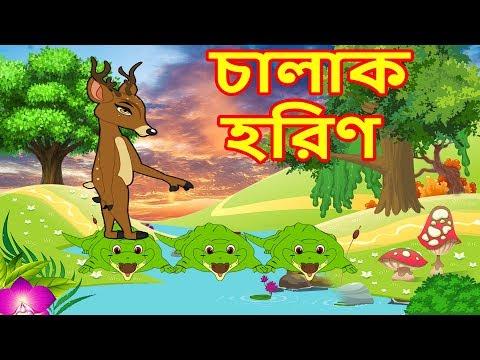 বুদ্ধিমান হরিণ-Intelligent Deer-Rupkothar Golpo-Bengali Fairy Tales-Thakurmar Jhuli-Bangla Cartoon