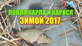 Ловля карпа и карася зимой 2017!!!