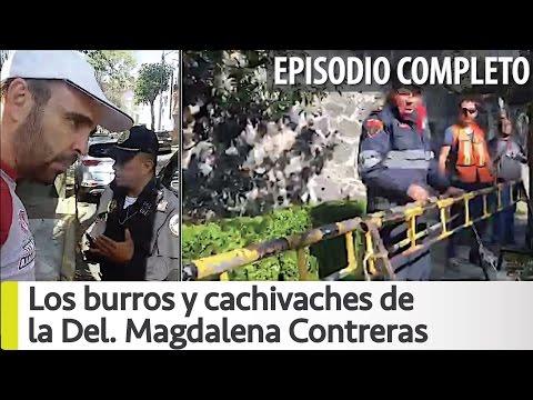 Arne aus den Ruthen Los burros y cachivaches de la Magdalena Contreras [COMPLETO]