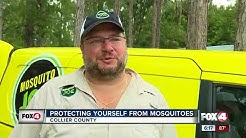 Mosquito control tips to help fight the bite