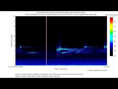 Powerful Sonar Pings and Sweeps