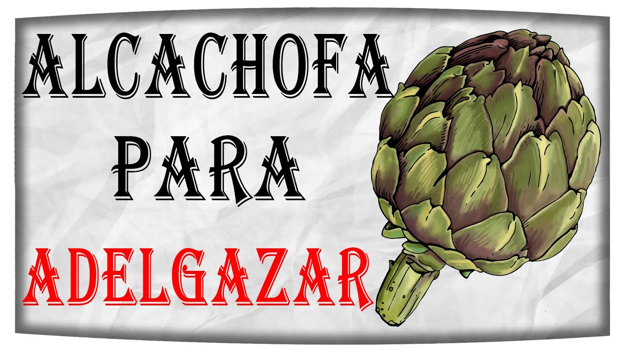 Como se toma alcachofa para bajar de peso