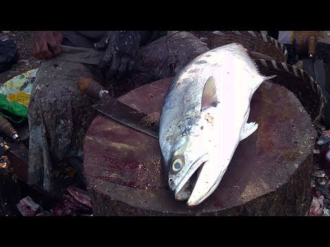 Giant Queenfish Cutting & Chopping in Indian fish market