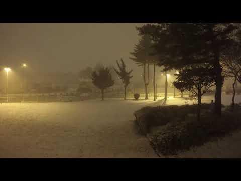 Snowy Christmas In Misawa Japan (Timelapse)