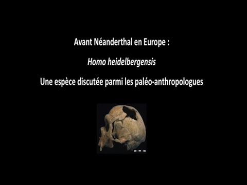 Avant Néandertal en Europe : Homo Heidelbergensis (1/3)