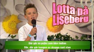 Adam i publiken - Det gåtfulla folket - Lotta på Liseberg (TV4)